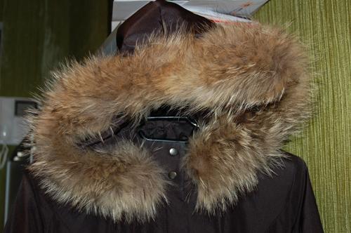 чем почистить мех енота: картинки куртки с меховым воротником.